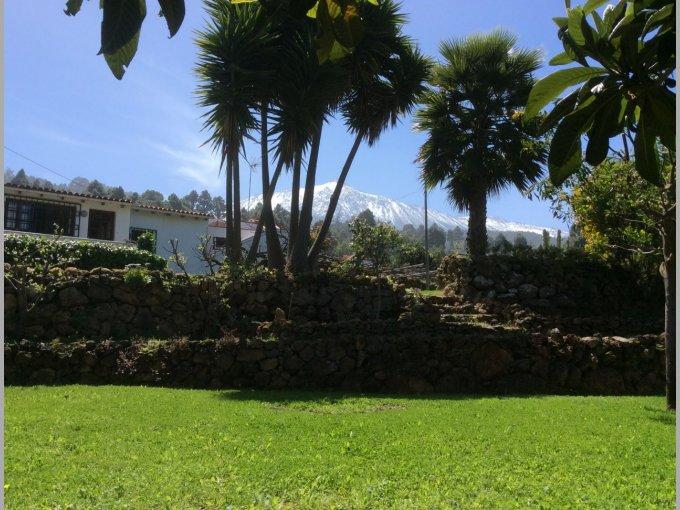 Rural House in Icod de Los Vinos, Tenerife