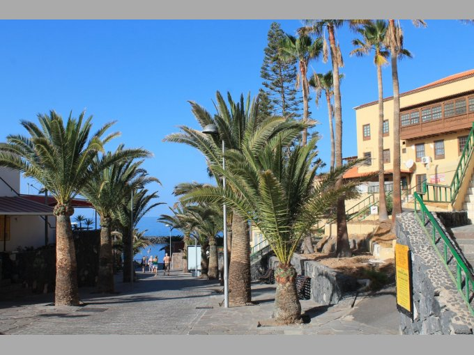 Cafe in Playa De Las Americas, Tenerife