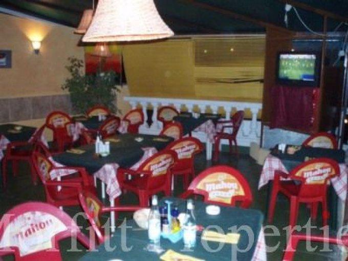 Freehold Pizza Bar in Torviscas Alto, Tenerife