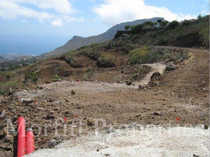 Land in Arona, Tenerife