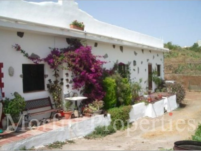 Rural House in Escalona, Tenerife
