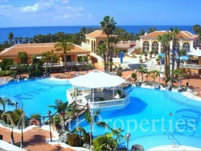 Studio Apartment in Tenerife Royal Garden, Tenerife